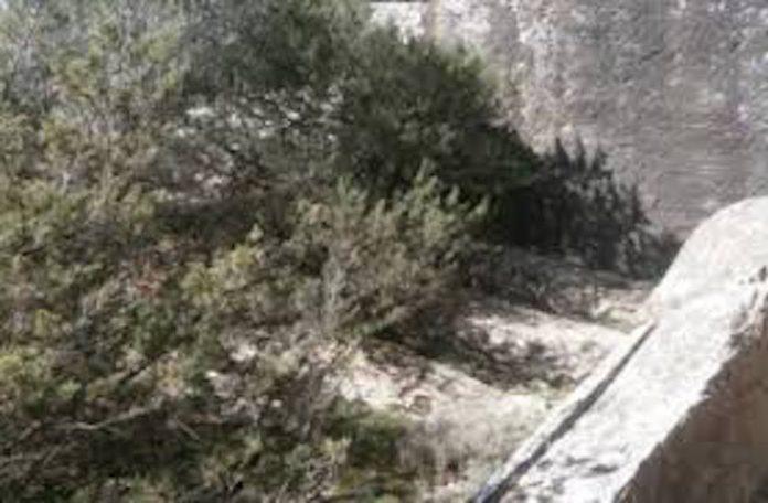 Αρχαία λατομεία Κάρυστος